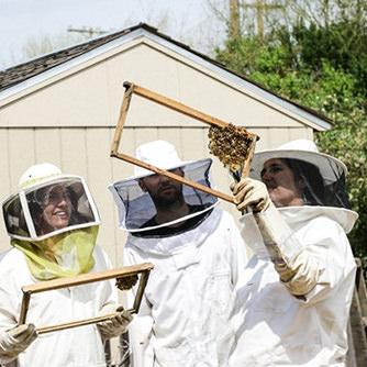 Čebelarji ki se pogovarjajo o čebelarstvu.